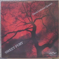 David Liebman Sweet Hands